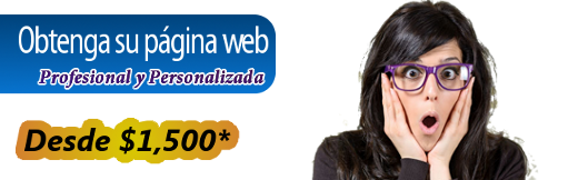 Obtenga su página web desde $1,500
